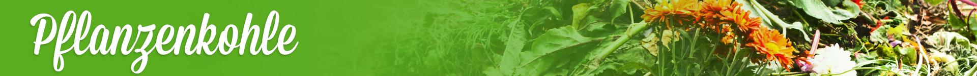 Pflanzenkohle verstehen und kaufen