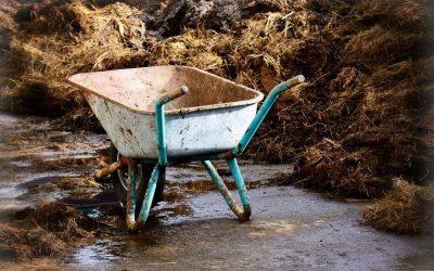 Warum Kompost manchmal schlecht verrottet