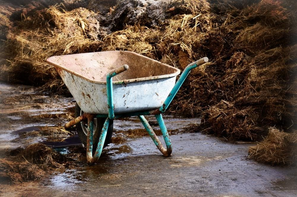 Warum Kompost manchmal schlecht verrottet.